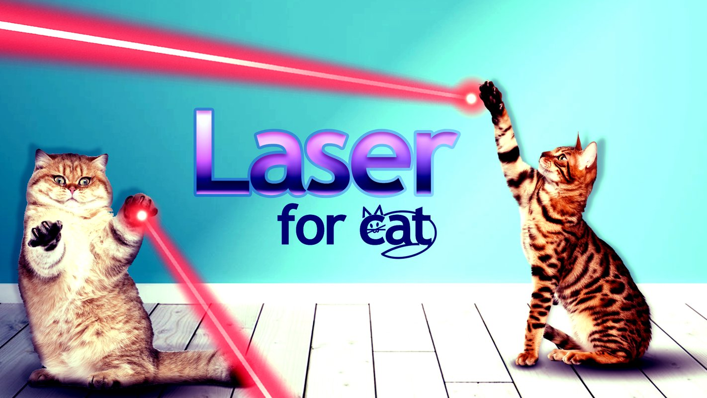 laser game for cats 3